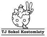 TJ Sokol Kostomlaty n/L