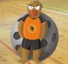 FBC Falcons Žižkov