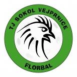 TJ Sokol Vejprnice